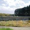 福岡のアイテム社より現地の写真が届くが、影の影響が気になります