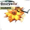 【トランス】Gouryella - Ligaya 〜トランスミュージックの宇宙観〜 - Universe of Spirituality -