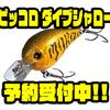 【EVERGREEN】シリーズ新サイズのスモールクランク「ピッコロ ダイブシャロー」通販予約受付中!