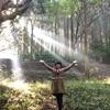 【高千穂紀行】槵触神社で朝の冥想