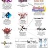 海外の反応「初心者のために、Fateシリーズのフローチャートを作ってみた!」