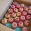 【ふるさと納税】秋田県横手市からりんごが届きました。
