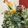 今週のお花とバーニー