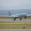 大韓航空のナッツ問題から考える飛行機のピーナッツアレルギー問題