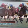 サラブレッドカード95 032 第43回NHK杯 マイネルブリッジ