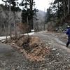 丹沢の西の端「菰釣山」