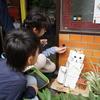 活用事例:千葉大学教育学部附属小学校 総合的な学習の時間(5年)