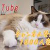 【YouTubeチャンネル登録者1000人突破】実際に効果のあった5つの方法!!