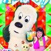DVD「いないいないばあっ!かんぱーい!!」が3月22日に発売!(特典映像「ダンスお手本バージョン」収録!)