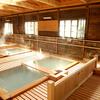 那須の最高!な日帰り温泉を紹介。那須高原で家族連れには日帰り温泉であったまるのがベスト