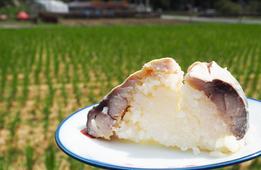 京都には「なれずし」に鯖を使う伝統食があった!