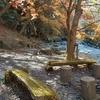 🌏#3 群馬県わたらせ渓谷 〜秋を感じる秘境の滝〜