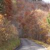 飛騨の紅葉 【せせらぎ街道】 Vol 2