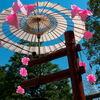 浅草神社三社祭の境内お飾り