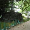 緑地と歩道の境