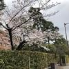 SSK (Sunny-Side of Kyoto)(+376/741)