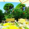 クロアチア ロクルム島の素敵レストラン Lacroma Restaurant