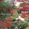 奈良の絶景日本庭園で癒やしのひととき