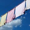 家庭用洗濯機は過去の遺物になるか?