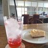 colissimo_cafe selen コリシモ カフェセレン兵庫丹波篠山市  カフェ  ランチ  ギャラリー