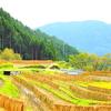 【旅行】樫原の棚田~日本の棚田100選~