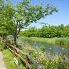花の楽園「浜名湖ガーデンパーク」に行ってきた