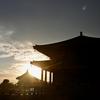 興福寺 中金堂/301年ぶりに再建。20年かけて完成しました。東大寺大仏殿に次ぐ大きさです。