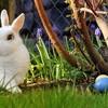 ウサギの着ぐるみでくんずほぐれつ。レズビアンのセックスレスを描くコメディ動画が秀逸
