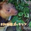 【レポ#30】キノボリカンガルーが見たい!よこはま動物園ズーラシア現地レポート(2021/10/2)【前編】