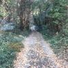 猟師歴50年の仕事と山の歩き方を紹介
