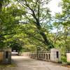 【加賀】山中温泉の名勝・鶴仙渓に架かる「黒谷橋」は芭蕉も訪れた優美な橋