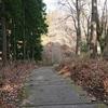 二本松(智恵子の生家・記念館と智恵子の杜公園)