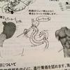 看護師が書いたメモ書きを見てパニックになった|スキルス胃がん患者の経験から