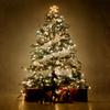 クリスマスツリーの歴史は間違いだらけ!?いったい何が本当なのか?
