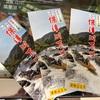 京都・亀岡「保津川下り」の色々…注意点