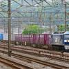 4月24日撮影 東海道線 平塚~大磯間 貨物列車② レール輸送貨物8087ㇾ 5094ㇾ