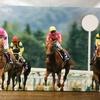 『競馬パネル:テイエムオペラオー「2000年:第121回天皇賞(春)」』