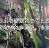 屋久島の森が教えてくれたこと その1 いくつもの苦労を生き抜く力と魅力。
