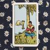 きょうのカード 2017/11/05 カップ 4