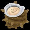貝殻のふしぎを調べよう  ①ホタテ ②アワビ ③いろいろな巻貝