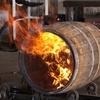 【ウイスキーの錬水術師たち】その1 『モルト』 二条大麦の見る夢