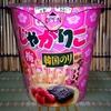 【期間限定】2週連続新商品 じゃがりこ梅と韓国のり風味