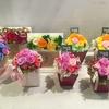 熊本イオンモールクレア母の日フェア特別開催のご案内