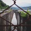【写真】スナップショット(2018/5/26)菰野調整池その2