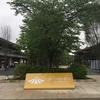 JO-TERRACE OSAKA(ジョー-テラス オオサカ)。 大阪城公園駅から徒歩2分の商業施設。ランナーには早朝-深夜営業が嬉しいランステから、チーム練習後は女子大好きパンケーキやがっつりBBQもできるぞ!!