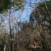 初冬の工石山遊山 日向ぼこ