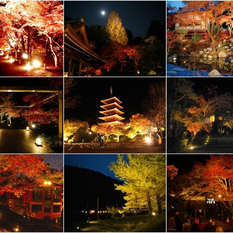 【2020】秋の夜を映し出す絶景紅葉!京都日付順・紅葉ライトアップ9選