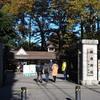 晩秋の「国立新美術館」~「神宮外苑の銀杏並木」~「新宿御苑」~「新宿都庁」撮り歩き。