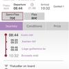 【中国東方航空で往復5万の格安ヨーロッパ旅行】12時間でベルギーって楽しめるの?? ベルギー在住の美女にブルージュ・ヘントを案内してもらったよ!!