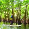 家族旅行でSUP秘境の滝巡り&鍾乳洞探検〜石垣島旅行・西表島ツアーおすすめ